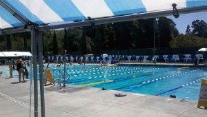 Mills College Pool Davenport Neighborhood Watch Newsletter